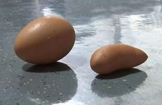 农村母鸡下了蛋,村民这辈子都没见过